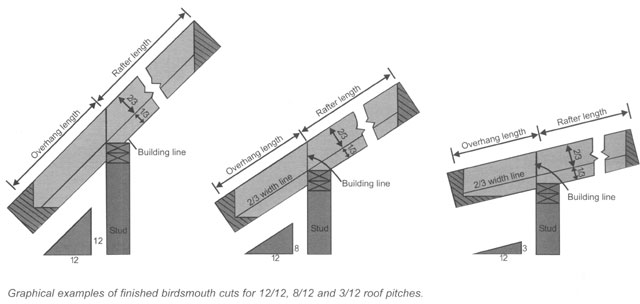 Builderbuddy on shed construction project framing rafters